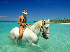 woman in bikini on horseback in water henry tours
